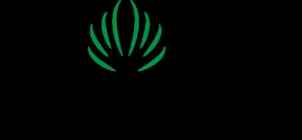Logo Ecobuzz