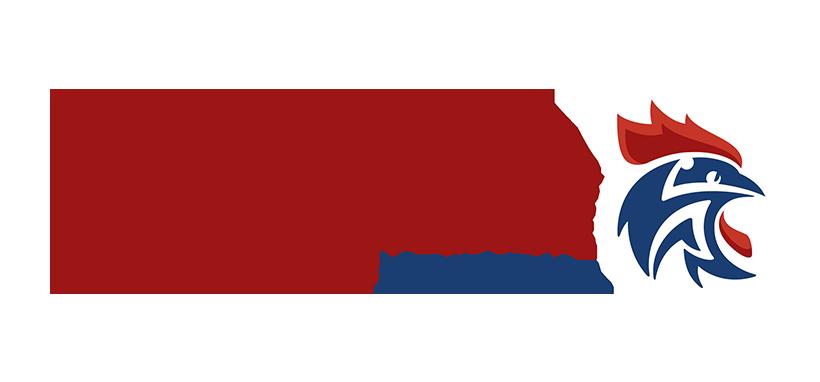 Logo Ligue Handball